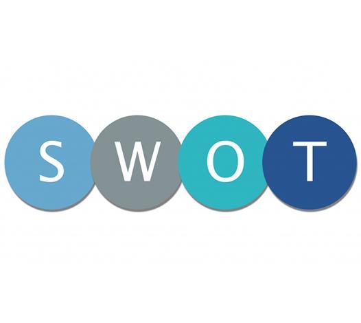 Kuvvet (SWOT) Analizi ve Strateji Üretme (6 saat)